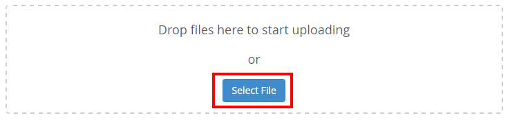 upload files cpanel manager